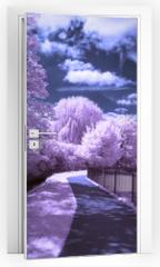 Naklejka na drzwi - A path through the park - Infrared landscape