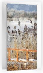 Naklejka na drzwi - winter landscape in the background field