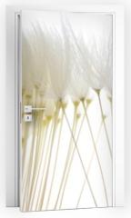 Naklejka na drzwi - soft white dandelion seeds