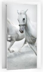 Naklejka na drzwi - White horses