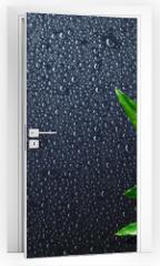 Naklejka na drzwi - spa background - drops and bamboo on black
