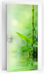 Naklejka na drzwi - bamboo stalks on water - blurs