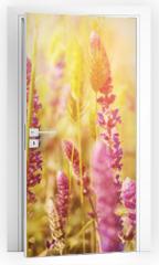 Naklejka na drzwi - Violet  meadow flower
