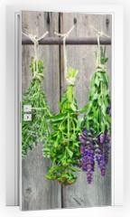 Naklejka na drzwi - kräuter, kräuter