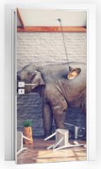 Naklejka na drzwi - The elephant  in a restaurant