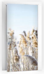 Naklejka na drzwi - Frozen dry grass.