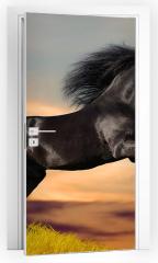 Naklejka na drzwi - Koń fryzyjski galopujący o wschodzie słońca