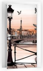 Naklejka na drzwi - Accordionist playing on Pont des arts in Paris