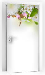 Naklejka na drzwi - Beautiful spring blossoms background