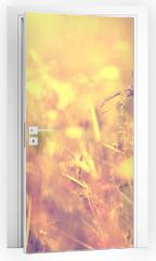 Naklejka na drzwi - Blurry vintage meadow background