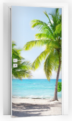 Naklejka na drzwi - Catalina island in Dominican republic