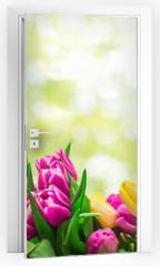 Naklejka na drzwi - Frühling Karte Banner frisch Tulpen