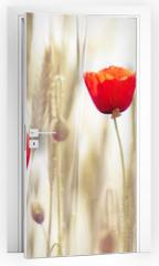 Naklejka na drzwi - Poppies