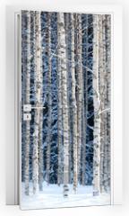 Naklejka na drzwi - Snowy birches