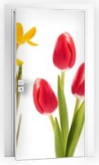 Naklejka na drzwi - Spring flowers collection