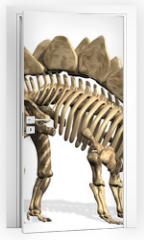 Naklejka na drzwi - Stegosaurus Skeleton
