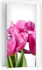 Naklejka na drzwi - Tulip.