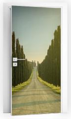 Naklejka na drzwi - Tuscany, Landscape. Italy