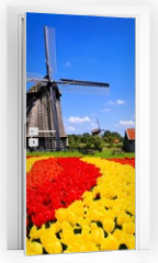 Naklejka na drzwi - Vibrant tulips with windmill, Netherlands