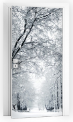 Naklejka na drzwi - Winter scenery, snowstorm in park