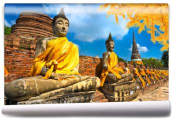 Fototapeta - Buddha Statues in Ayutthaya, Thailand,