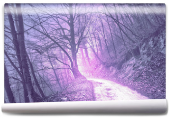 Fototapeta - Magical foggy purple, serenity pantone color light in mystic forest with road.