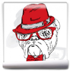 Fototapeta - Funny bulldog vector. Bulldog wearing a hat with glasses and tie.