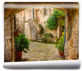 Fototapeta - Narrow street of medieval tuff city Sorano with arch, green plants and cobblestone, travel Italy background