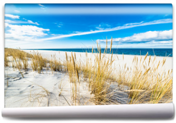 Fototapeta - Sea landscape with sandy dunes and grass