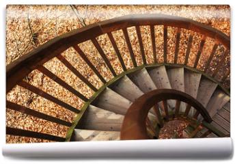 Fototapeta - Stairs to Tree House
