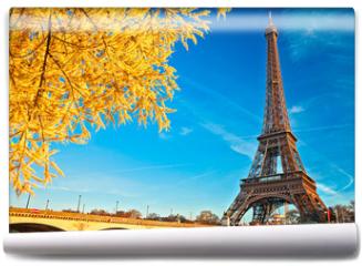 Fototapeta - Eiffel tower at sunrise, Paris.
