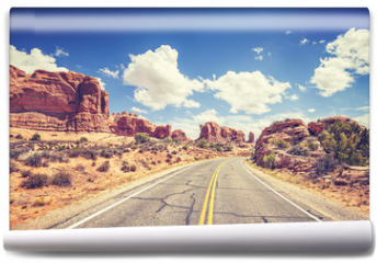 Fototapeta - Retro stylized scenic road, Arches National Park, USA