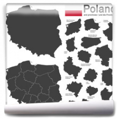 Fototapeta - country Poland and voivodeships
