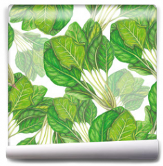 Fototapeta - Seamless pattern of hand drawn spinach