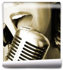 Fototapeta - retro singer
