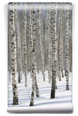 Fototapeta - Winter Forest