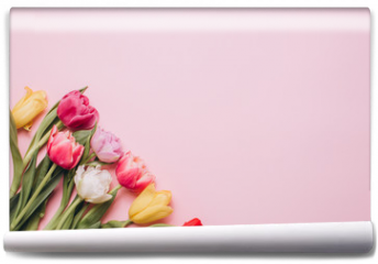 Fototapeta - Tulips on a pink background. Flat lay and top view.