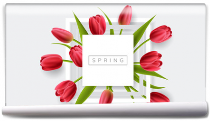 Fototapeta - White frame with red tulip flower and green leaf. Realistic vector illustration for spring and nature design, banner with square frame