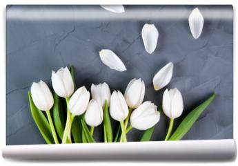 Fototapeta - white tulips on a grey background