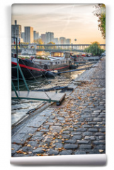 Fototapeta - Houseboats on a paved bank of the river Seine, Paris France