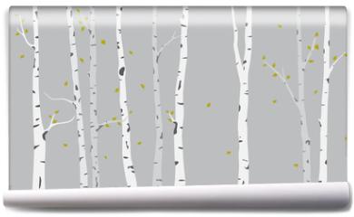 Fototapeta - Birch Tree Silhouette Background