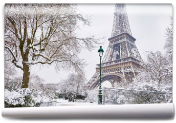 Fototapeta - Scenic view to the Eiffel tower on a day with heavy snow