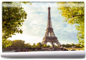 Fototapeta - Paris Eiffel Tower, France