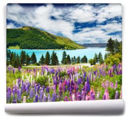 Fototapeta - Lake Tekapo, New Zealand