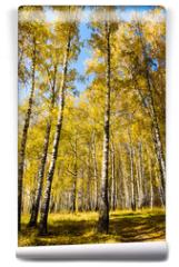 Fototapeta - Autumnal Trees Landscape