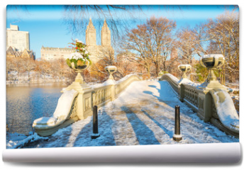 Fototapeta - Central Park. New York. USA in winter covered with snow. Bow bridge.