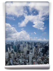 Fototapeta - Aerial view of Manhattan skyscraper from Empire state building observation deck. Cloudy blue sky