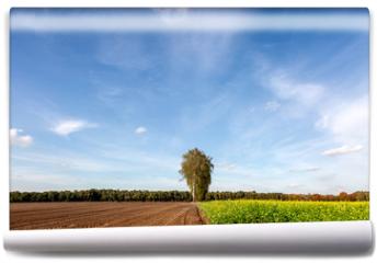 Fototapeta - Herbstlandschaft