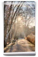 Fototapeta - Spaziergang im Spätherbst, erster Frost