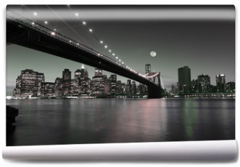 Fototapeta - Downtown Manhattan skyline